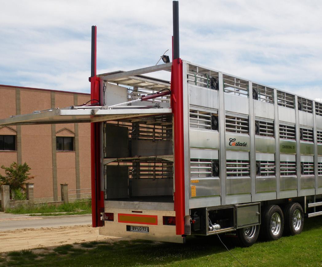 transporte de porcino
